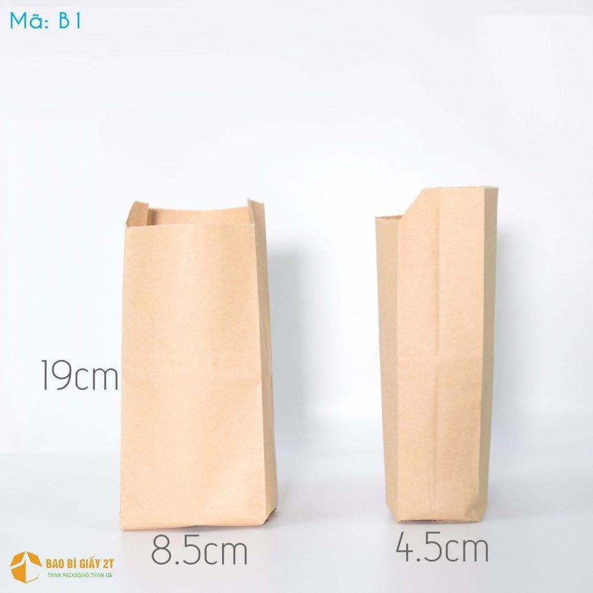 Túi giấy B1