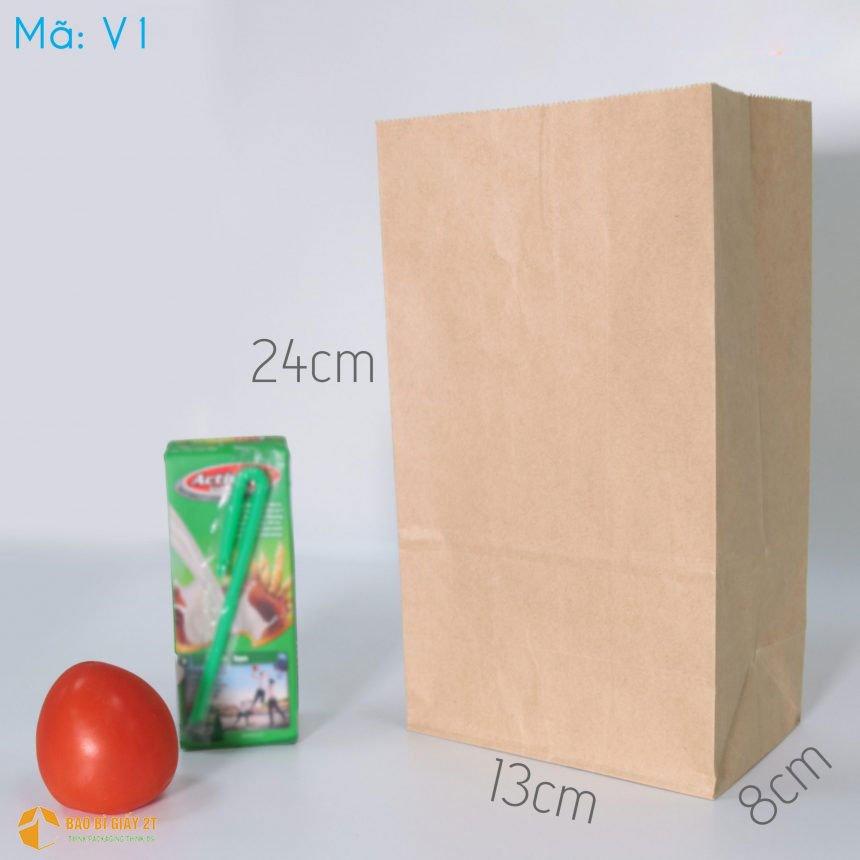 Túi đáy vuông V1